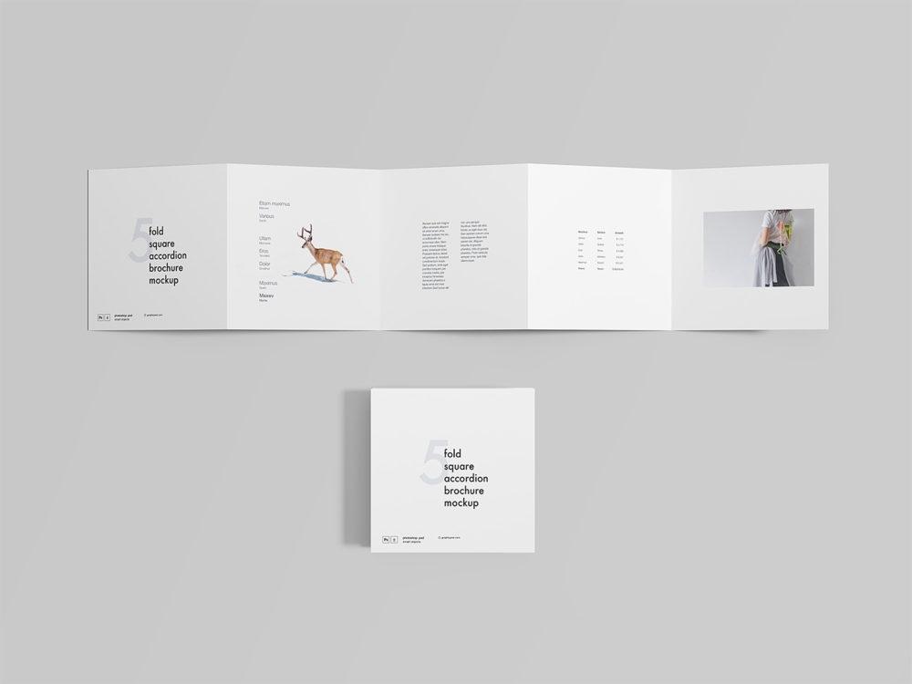 5 fold square accordion brochure mockup free mockup