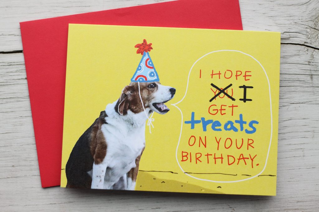 beagle dog birthday card funny pet birthday card dog in