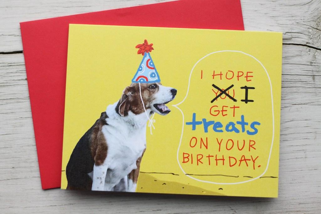 beagle dog birthday card funny pet birthday card dog in