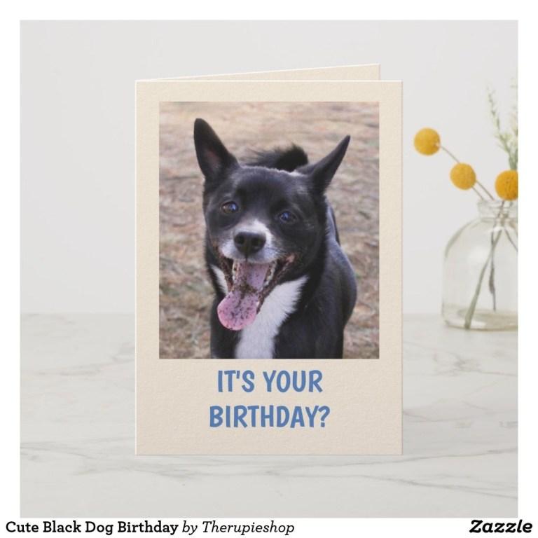 cute black dog birthday card zazzle the rupie shop