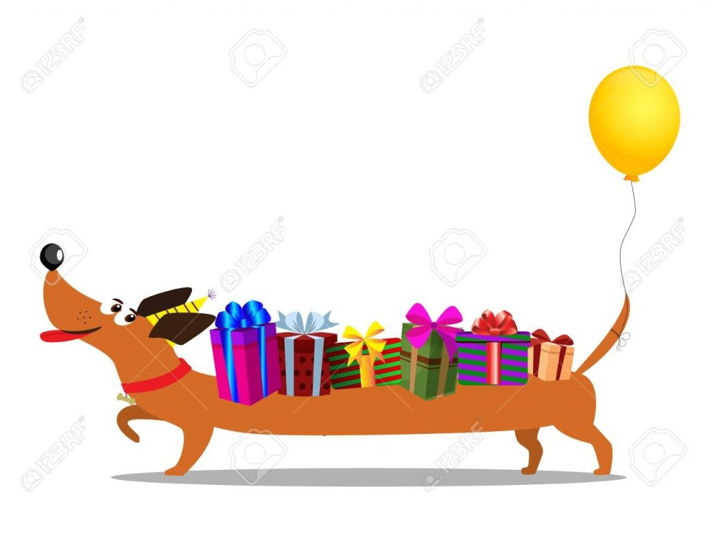 cute cartoon long dachshund in birthdat hat with baloon on the