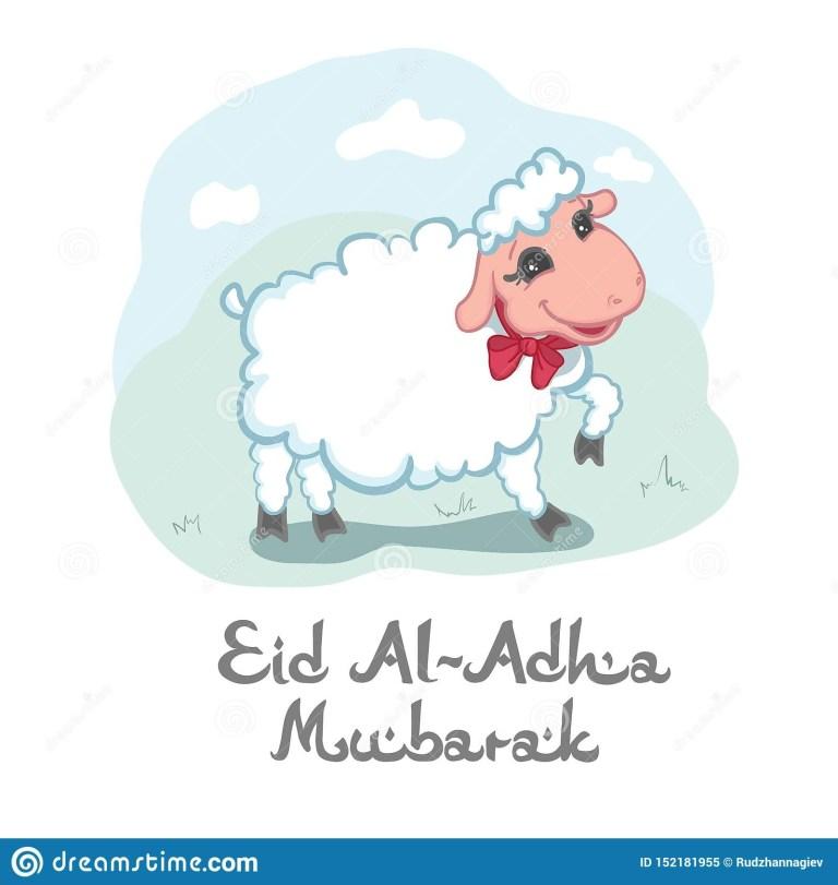 eid al adha mubarak card design with cute little woolly