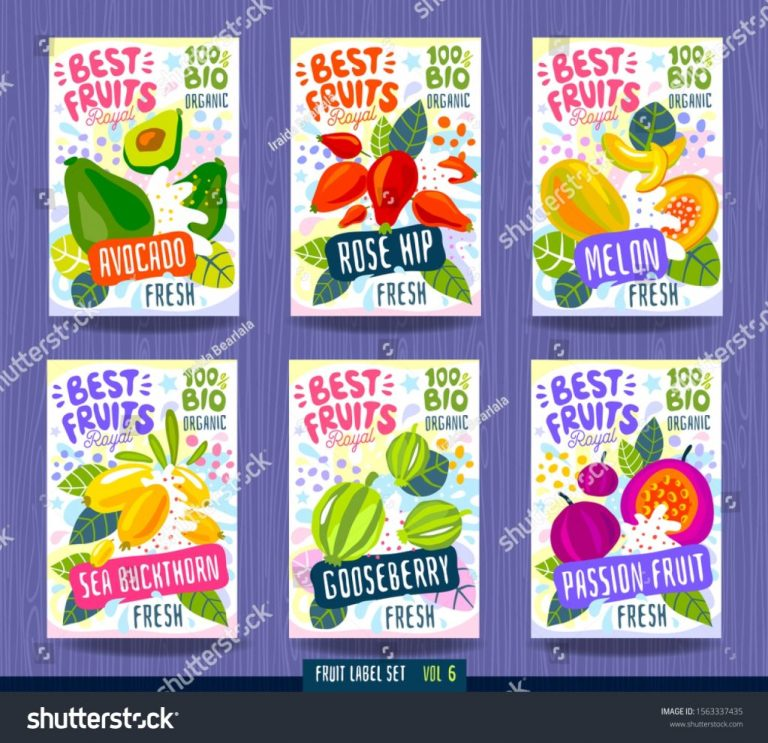 splash food label template colorful vector