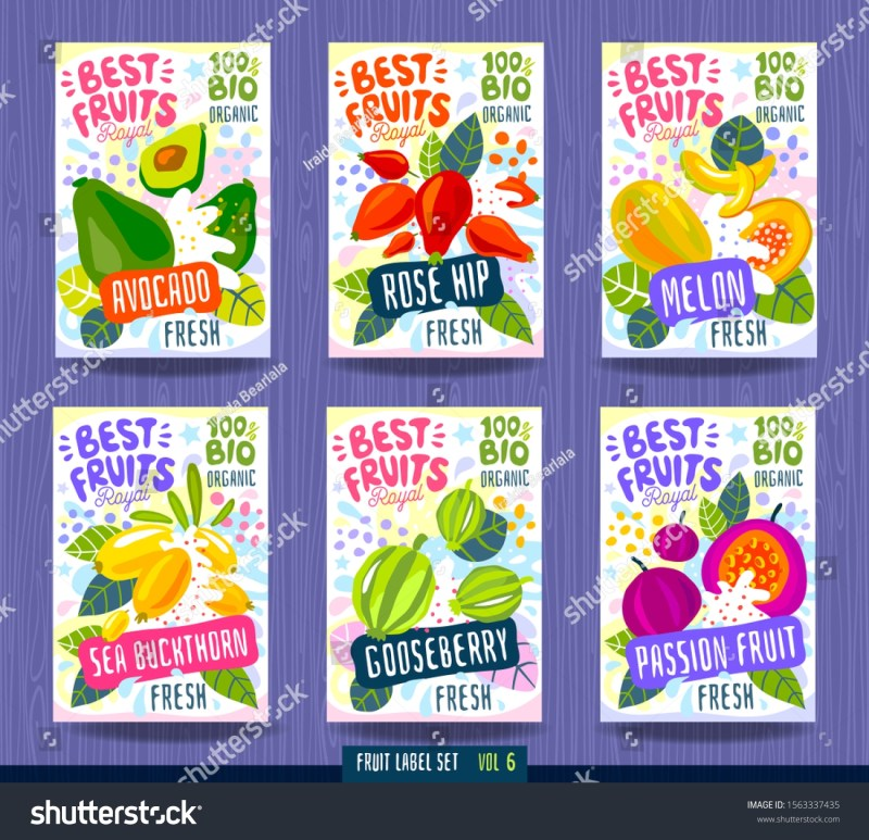 splash food label template colorful vector