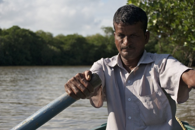 Behind the oars: In the mangrove forest of Pichavaram, India.