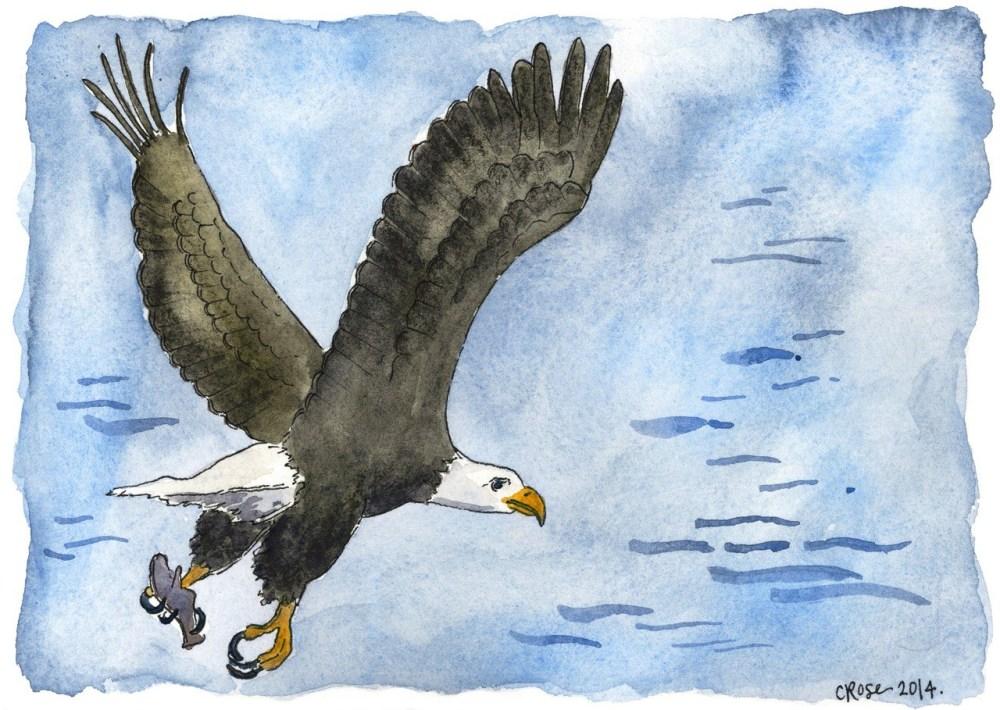 Sketch of eagle