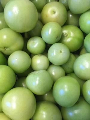 gröna tomater, överskott, närodlat