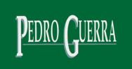 Logo de Euroko