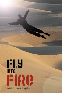 Cover image for Fly Into Fire