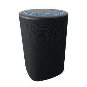 VAUX Portable Speaker for Echo Dot #Giveaway Ends 12/25