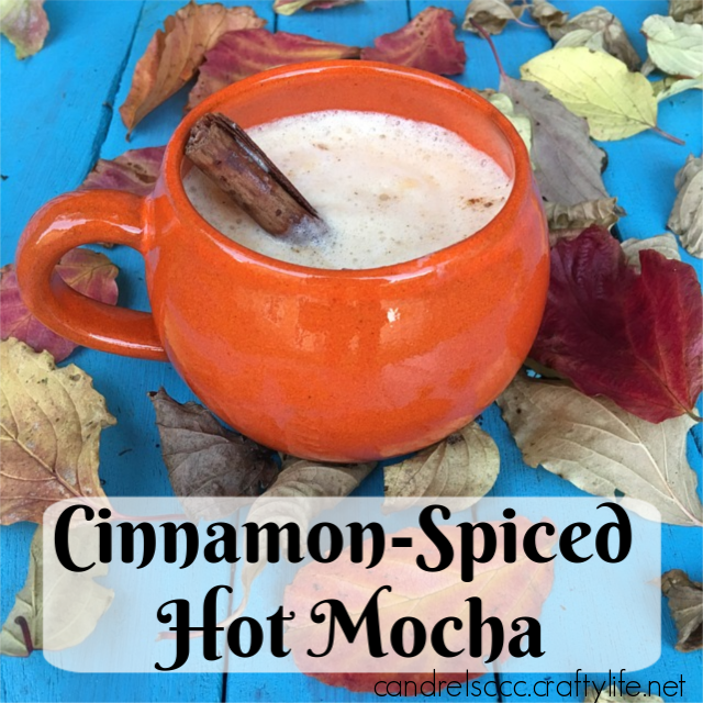 Cinnamon-Spiced Hot Mocha Recipe
