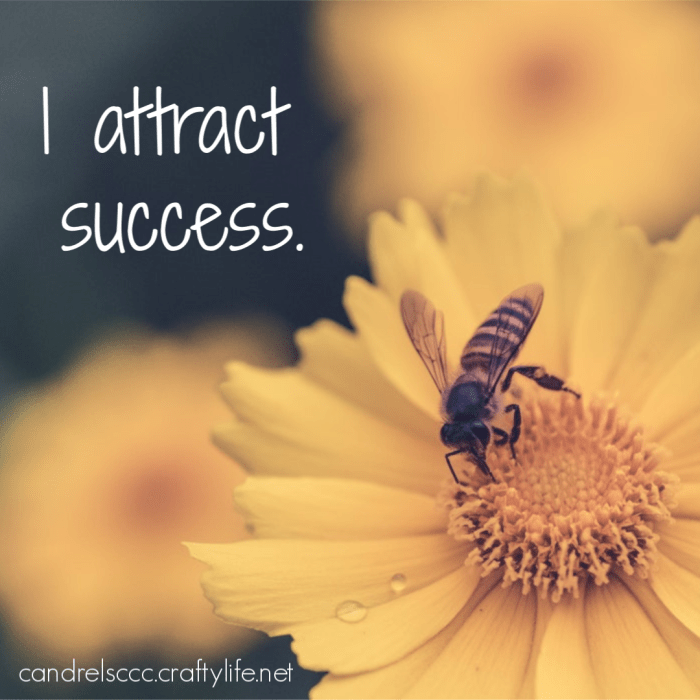 Daily Affirmation February 20
