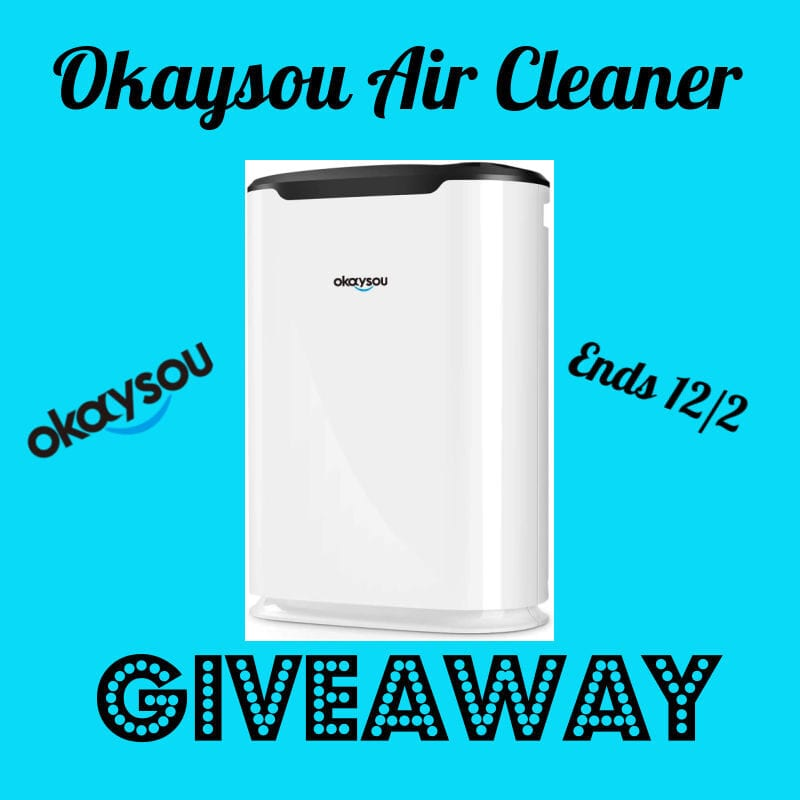 Okaysou Air Cleaner #Giveaway Ends 12/2 @las930