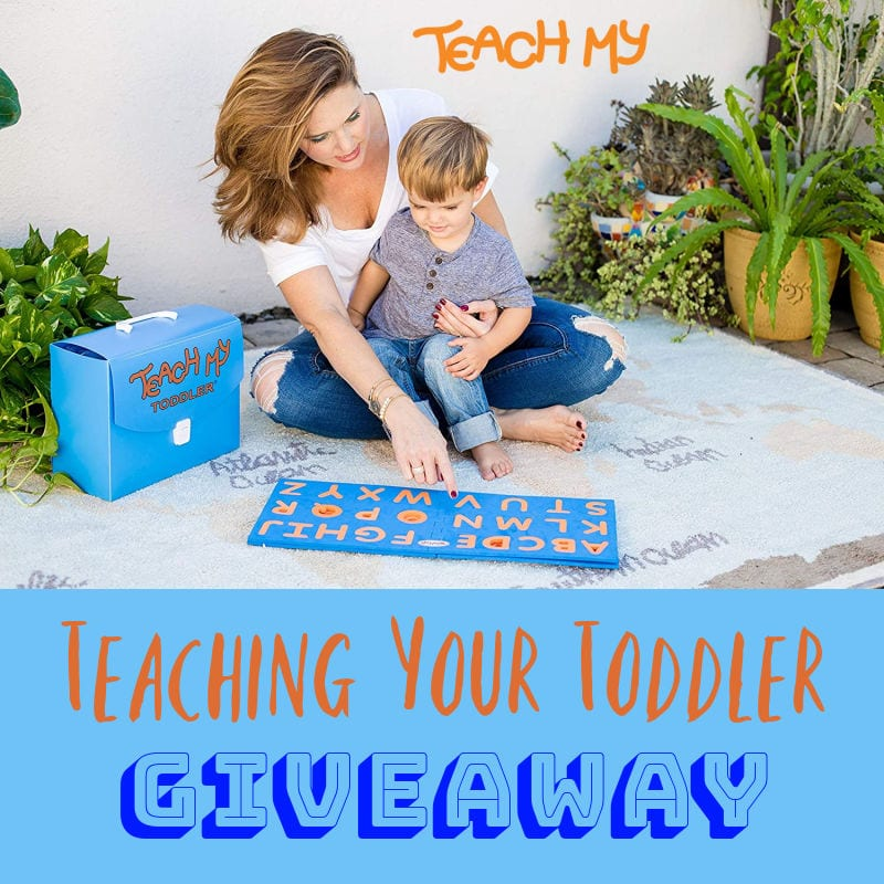 Teaching Your Toddler #Giveaway Ends 3/11 @teachmy @las930