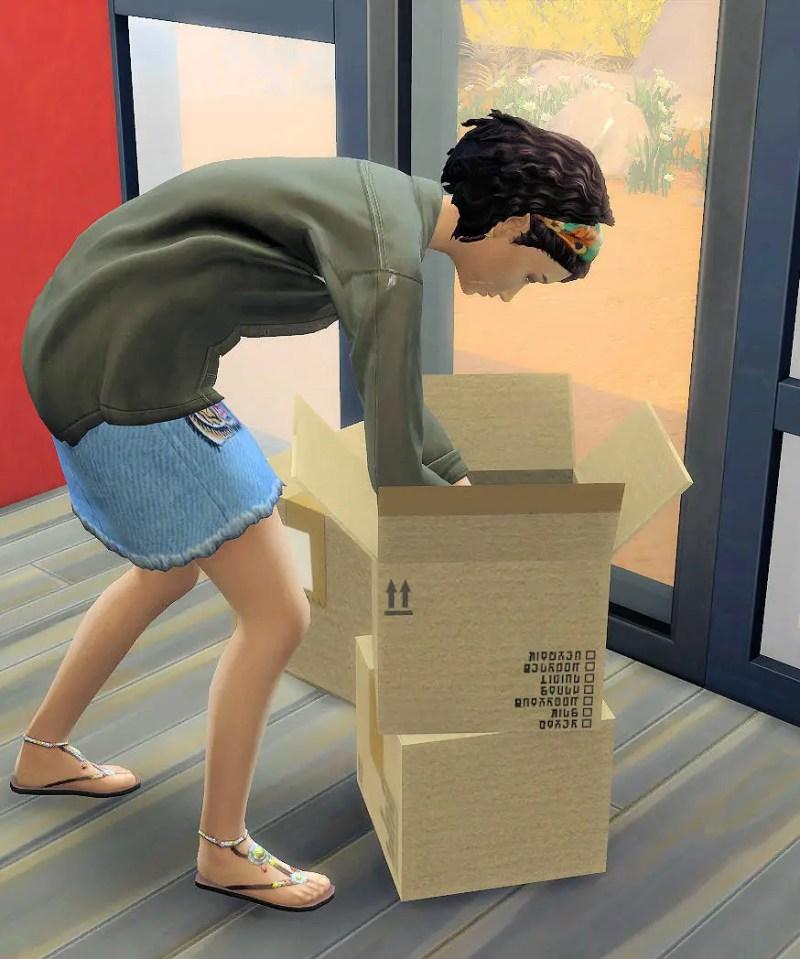 packing crates déménagement les sims 4