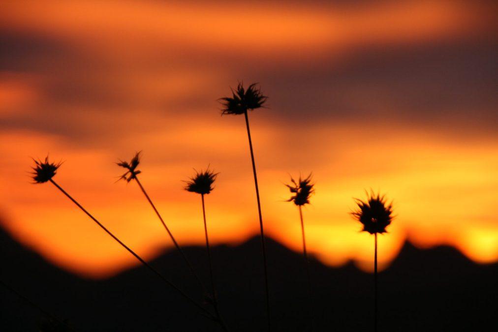 Warme zwoele dagen, heerlijke koele Spaanse nachten