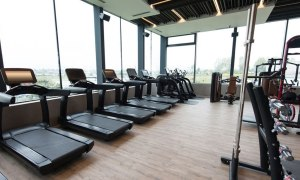 why studios and gyms need your help