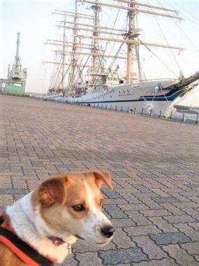 帆船と記念撮影