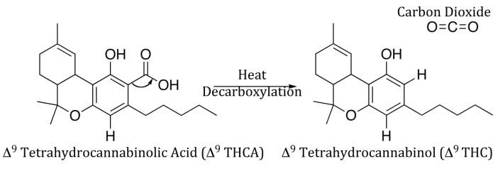 marijuana decarboxylation