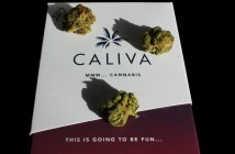 Caliva Black Jack, Marijuana Strain Reviews