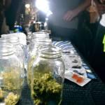 """EEUU: """"Regalos"""" de marihuana en el «distrito del cannabis»"""
