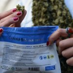 Aseguran que habrá desabastecimiento de marihuana por tres semanas