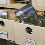 Abren sus puertas las tiendas de venta de cannabis con fines recreativo en California