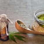 COMUNICADO: Fármacos ricos en Cannabidiol ofrecen grandes resultados