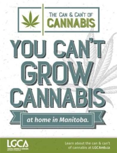 manitoba cannabis rules