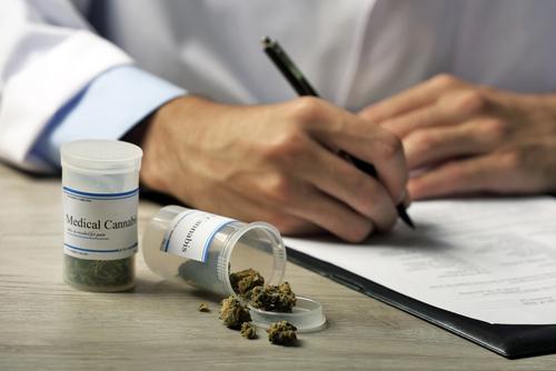 weed doctors