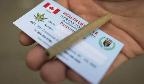 Health Canada Grow Op License