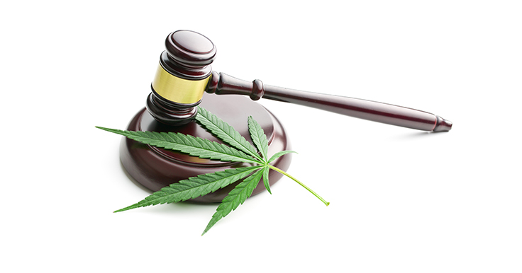 Massachusetts Cannabis Control Commission Releases Draft of Regulations for Implementation of Adult-Use Marijuana