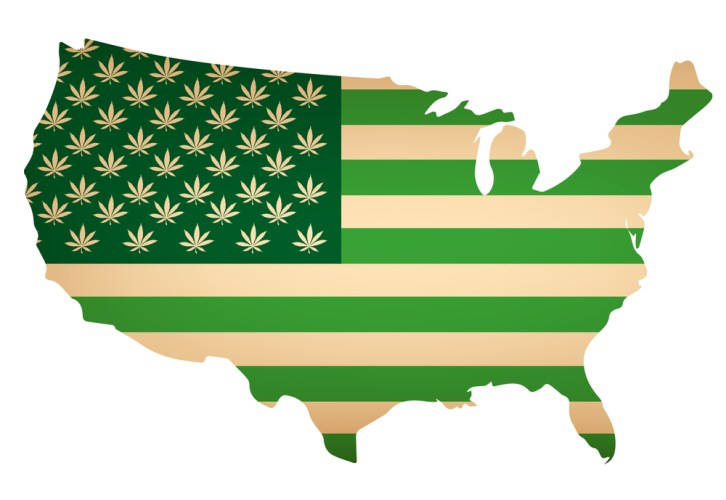 Riding the Legalization Wave: The After-Effects of the Midterm Elections