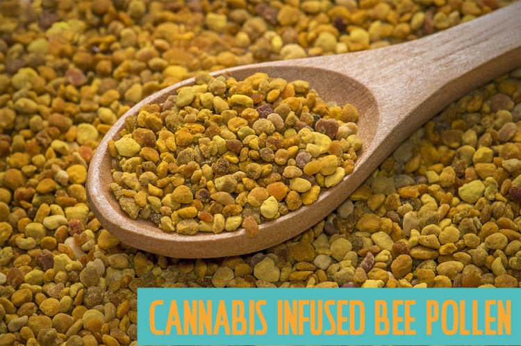 Cannabis Infused Bee Pollen