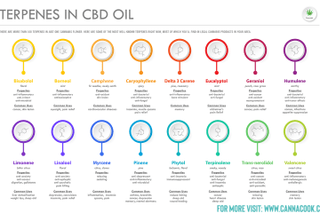 What Terpenes Are Good For Anxiety?