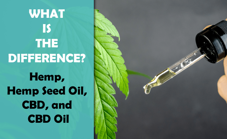 What Is The Difference Between Hemp & CBD?