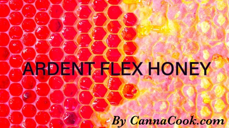 Ardent Infused Honey
