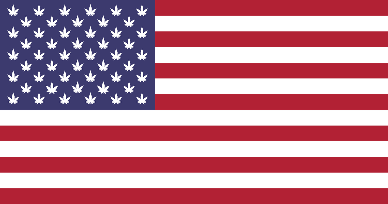 Cool United States Flag - Weed Seeds USA