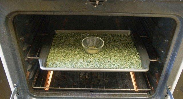Décarboxylation du THC et du CBD – Activer le cannabis.