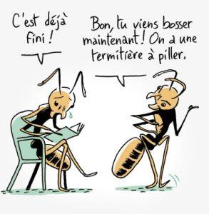 Fin_La guerre des fourmis
