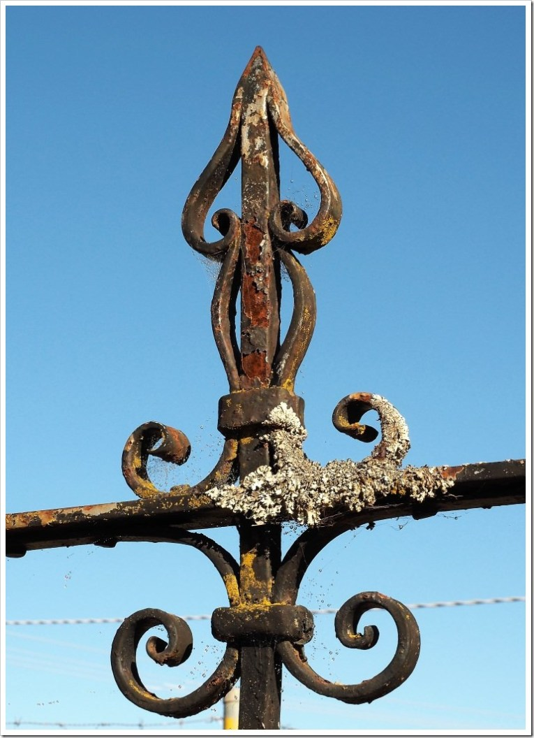Wrought Iron Detail #1