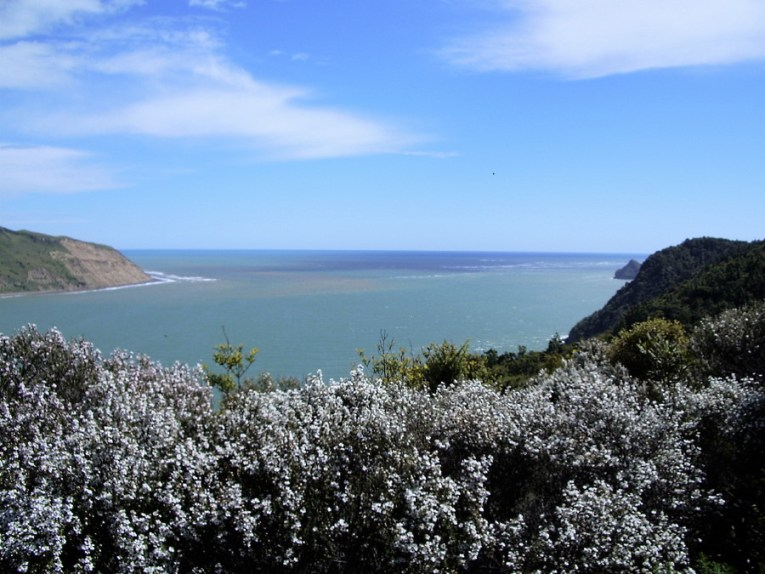 Manukau Harbour Entrance