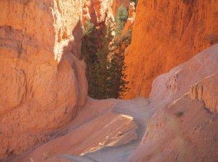 navajo-trail