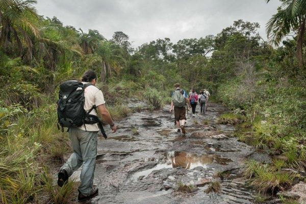 Senderos para hacer trekking para llegar a Caño Cristales, aprobados por Cormacarena y Parques Nacionales Naturales