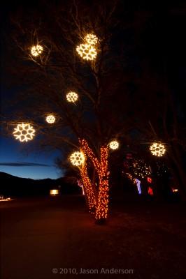 Christmas Lights at Chatfield 5
