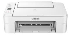 Canon Pixma TS3100 Driver & Wireless Setup