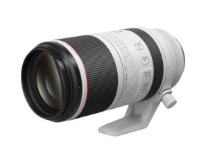 canon rf RF 100-500mm f/4.5-7.1L IS