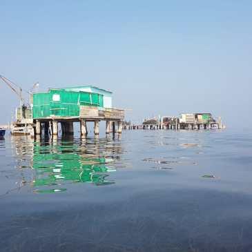 Canoa-kayak: Escursione a Chioggia