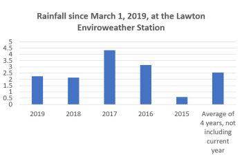 Rainfall accumulations
