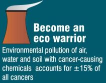 Become an Eco Warrior